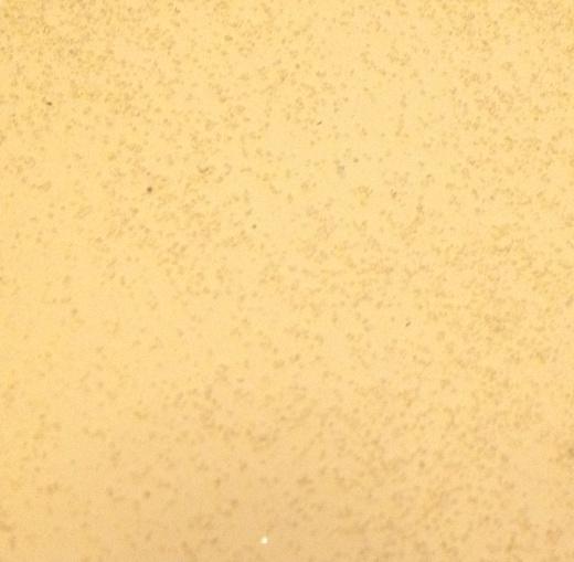 С добавлением кварцевого песка
