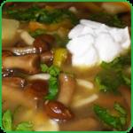 Грибной суп из лесных грибов с мясом рецепт. Как приготовить грибной суп