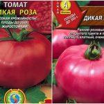 Томат Дикая роза: характеристика и описание сорта, урожайность с фото