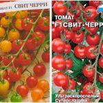 Томат Свит черри: характеристика и описание сорта, урожайность и выращивание с фото
