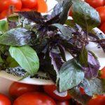 Помидоры с базиликом на зиму: рецепты маринования с фото и видео