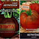 Томат Негритенок: характеристика и описание сорта, урожайность с фото