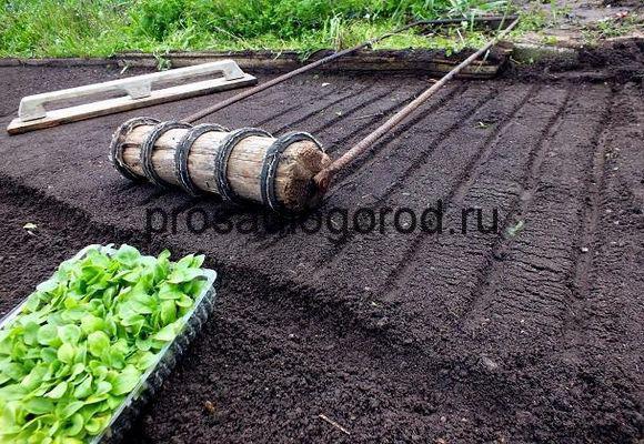 Приспособления для дачи и огорода своими руками фото 686