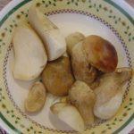 Картофель в духовке запеченный с грибами и сметаной — как вкусно запечь картофель в духовке, пошаговый рецепт с фото