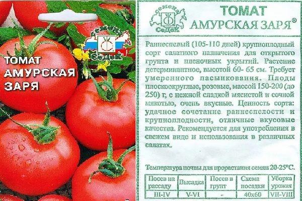 Томат Амурская заря: характеристика и описание раннеспелого сорта с фото