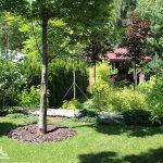 Наиболее распространенные типы ландшафтного озеленения