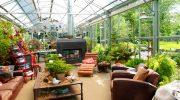 Основные особенности зимнего сада