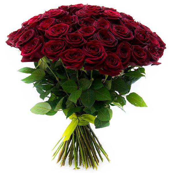Как правильно выбрать цвет роз для подарка девушке или жене