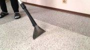 Как проводят химчистку ковров